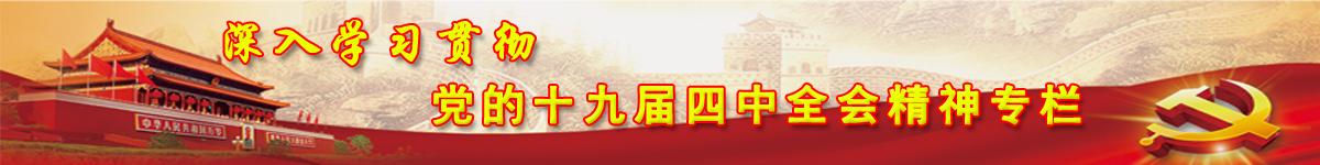 深入学习贯彻党的十九届四中全会精神专栏